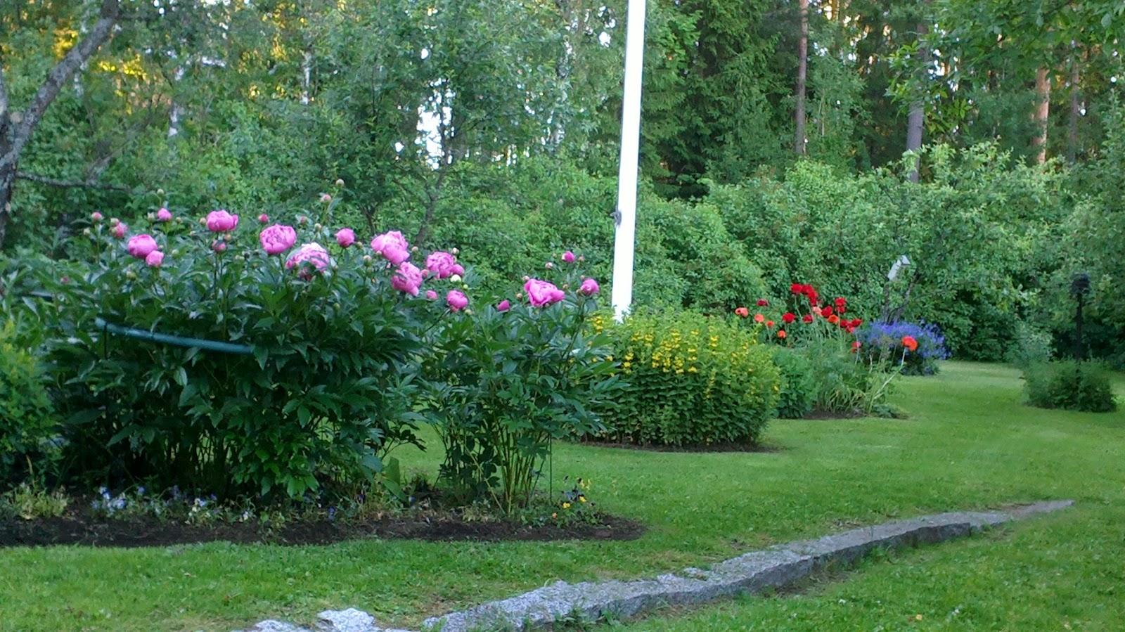 Puutarhaa puunaamassa jälleen! – Gardening again!