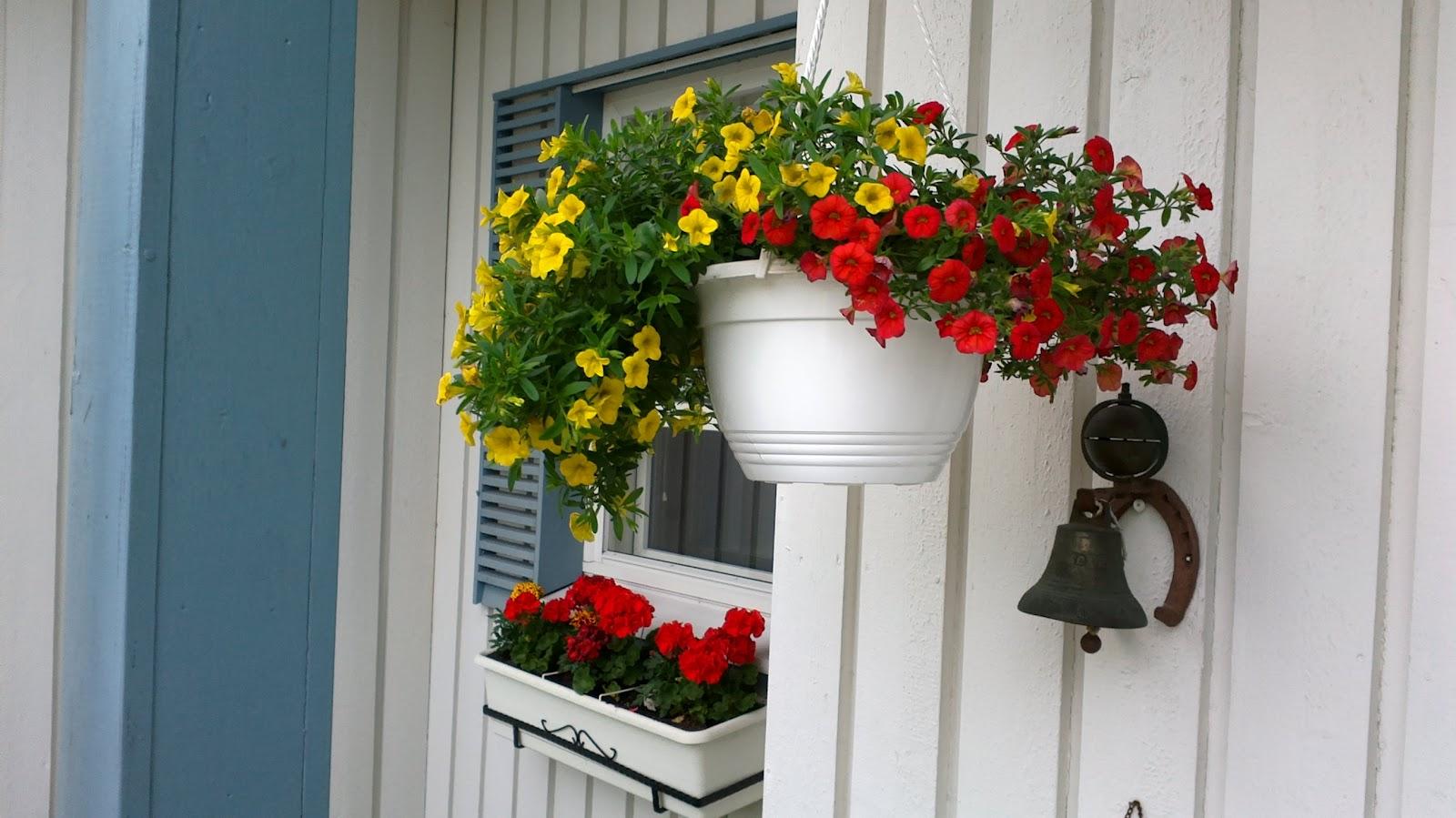 Koko päivä puutarhatöissä – Gardening the whole day