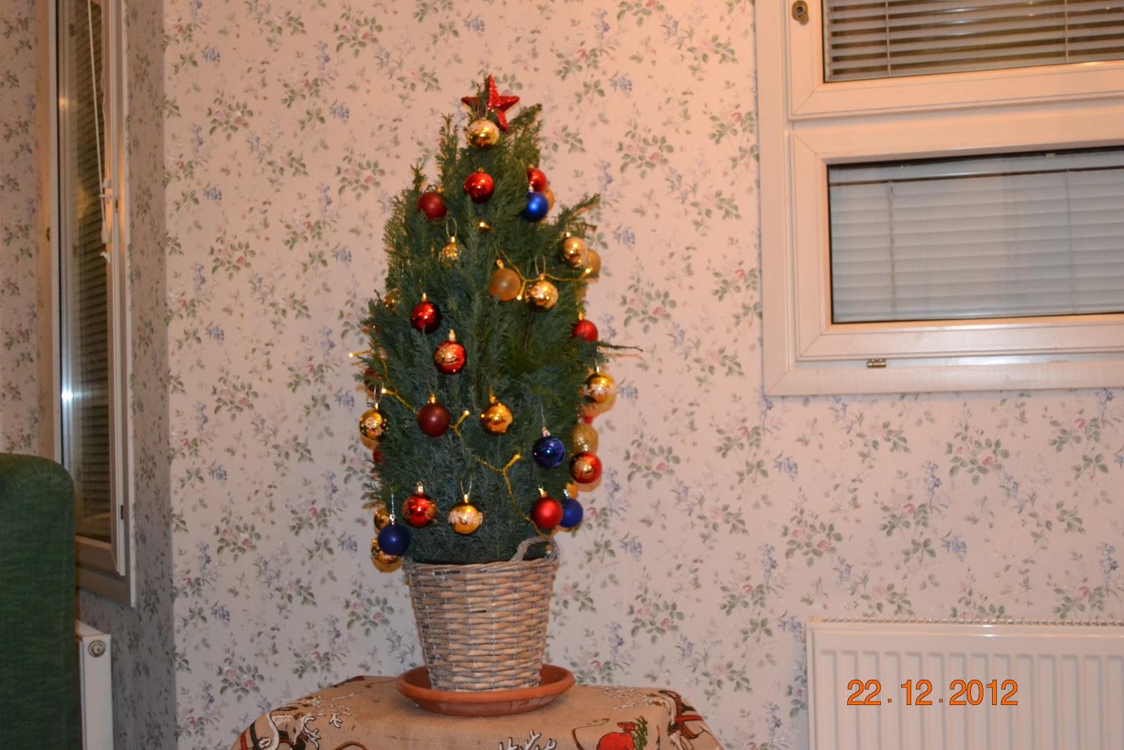 Joulu Itä-Suomessa – Christmas in Eastern Finland
