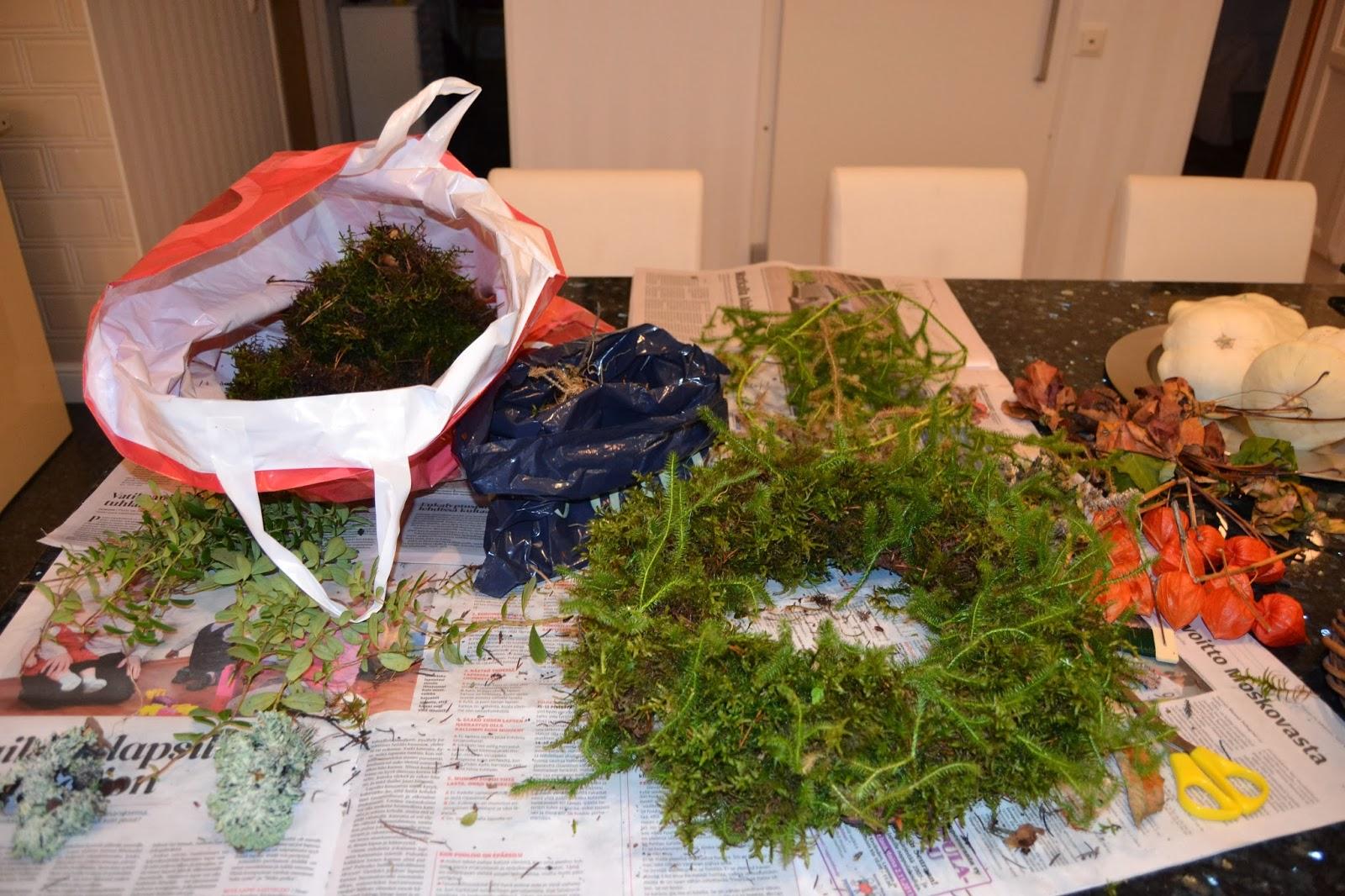 Kranssia pukkaa… – Making wreaths…