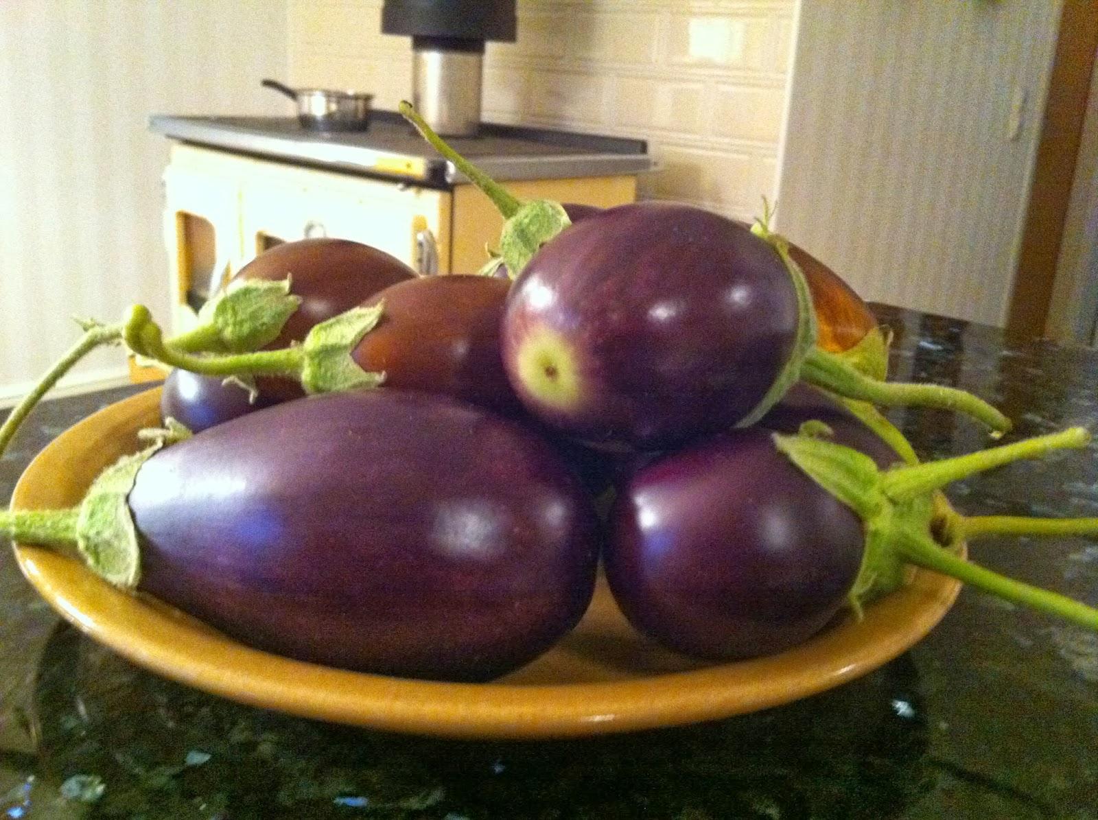 Viimeiset munakoisot – The last aubergines