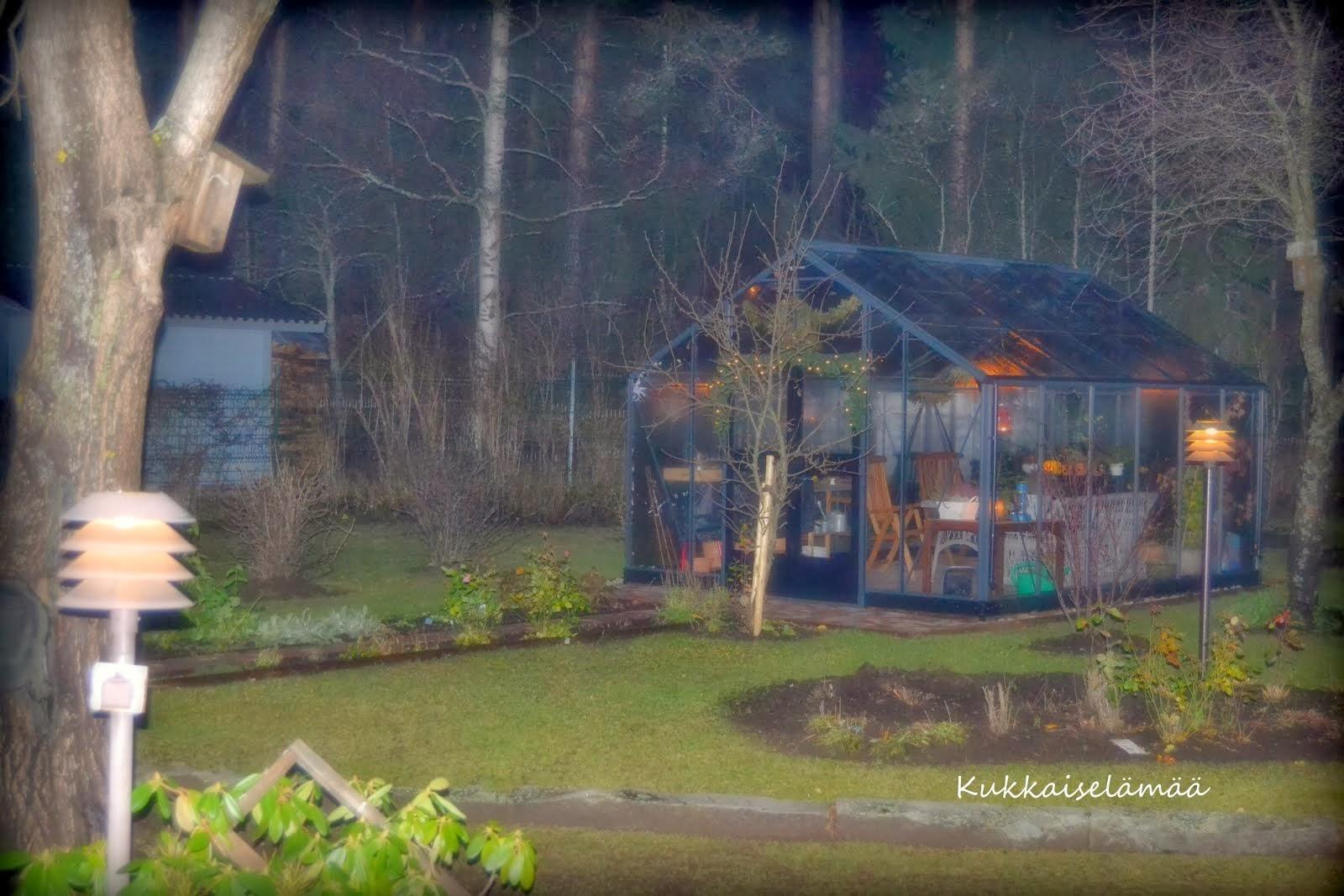 Ilta kasvihuoneella – Twilight in the greenhouse