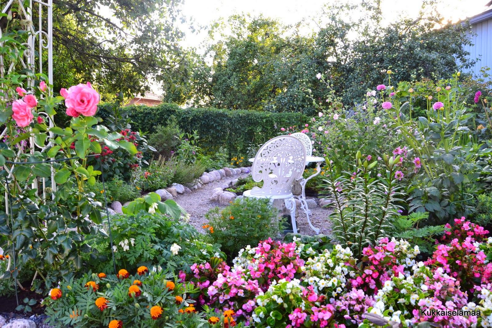 Daalioiden aikaa – Dahlias and other flowers