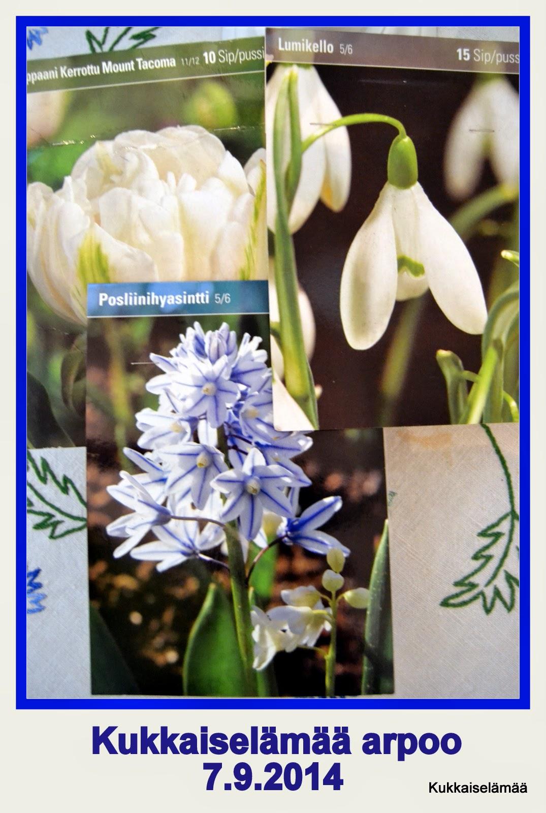 Kukkasipuliarvonta
