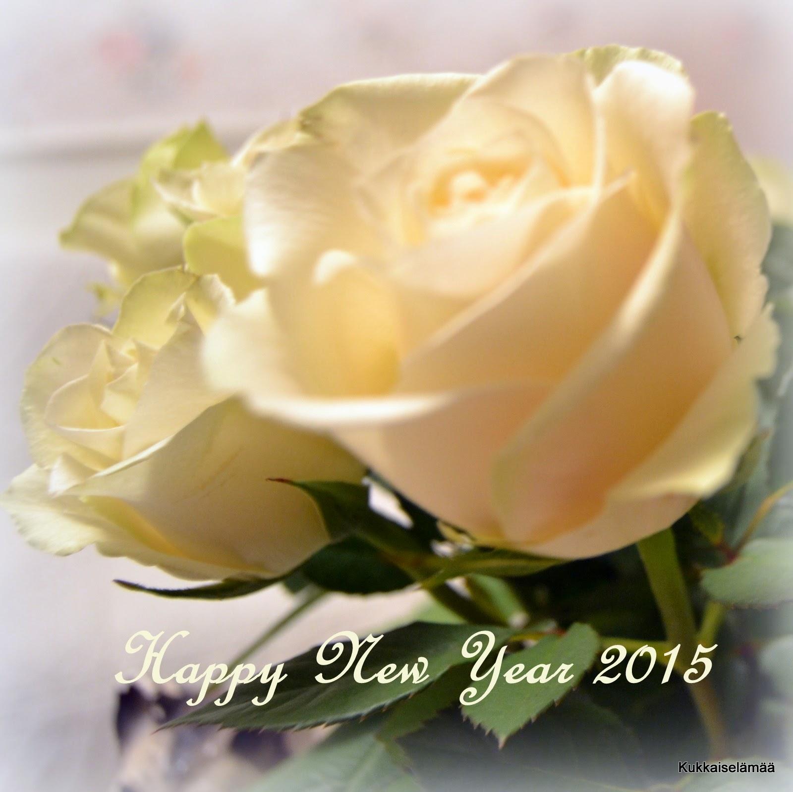 Onnellista Uutta Vuotta 2015! – Happy New Year 2015!
