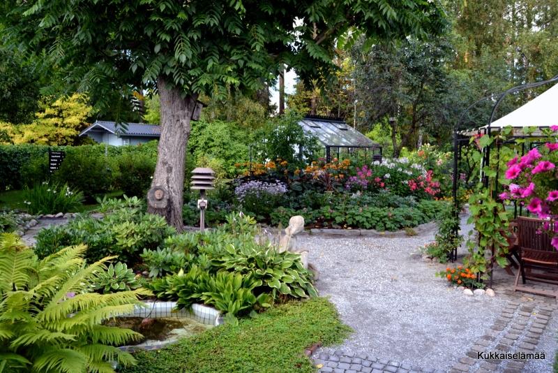 Aurinko paistaa (risukasaankin) – Garden pics