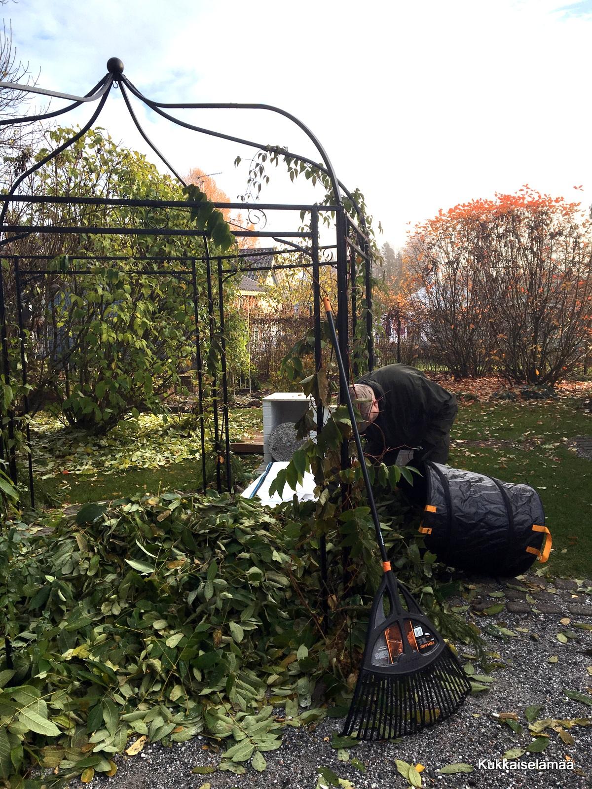 Syksyisiä puuhia – Autumnal chores