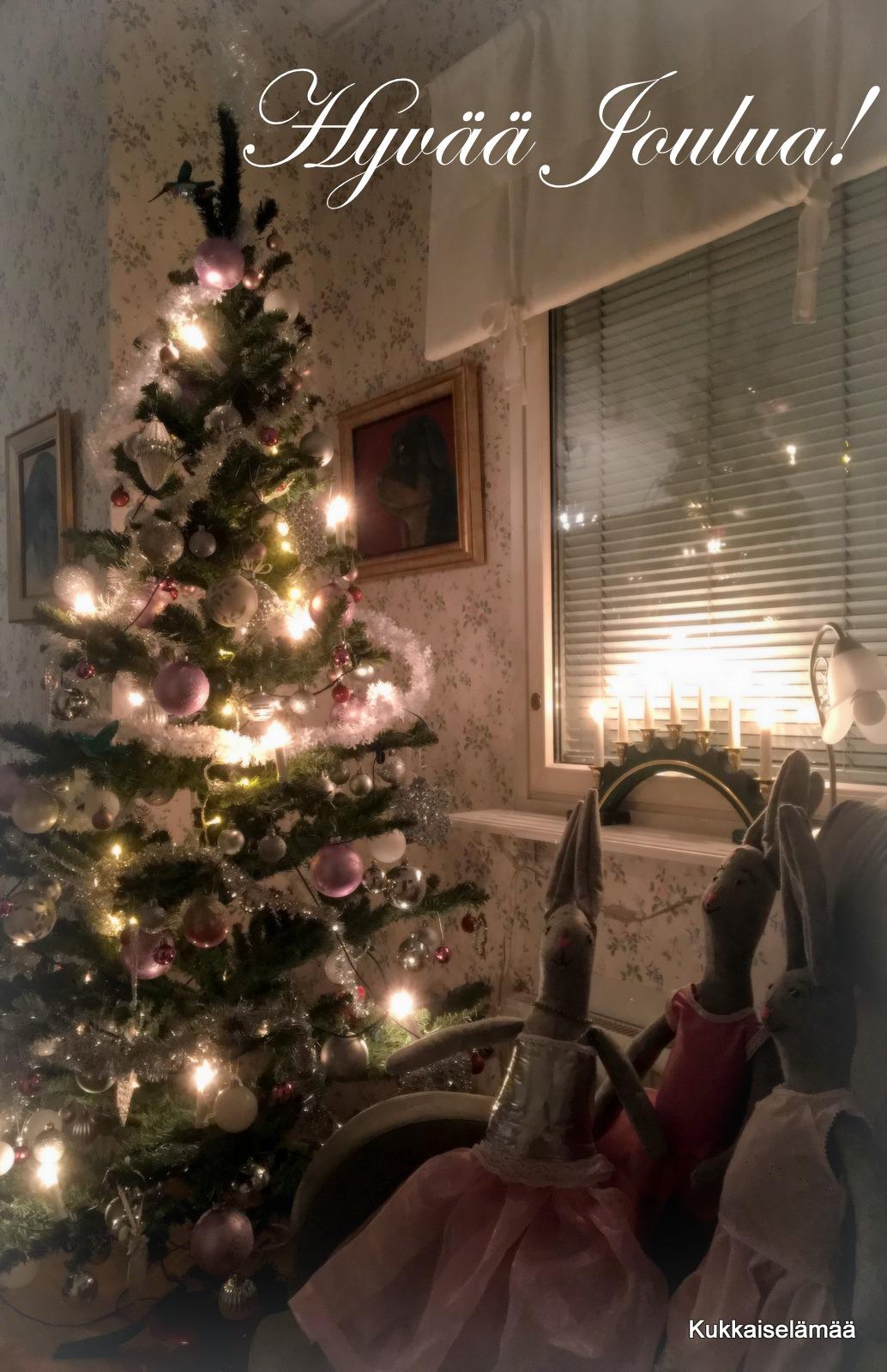 Hyvää Joulua! – Merry Christmas!