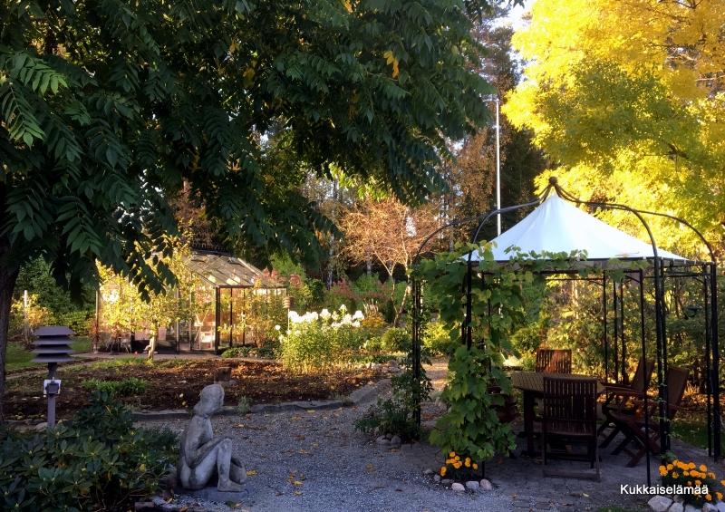 Syksyinen puutarha – Autumnal garden