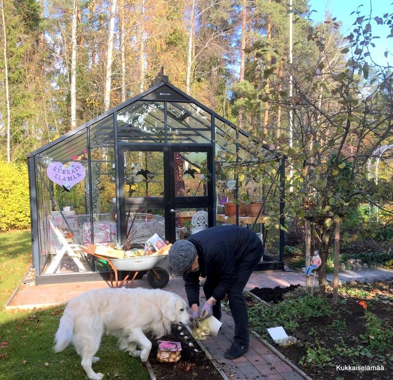 Apujoukot asialla – Garden helpers