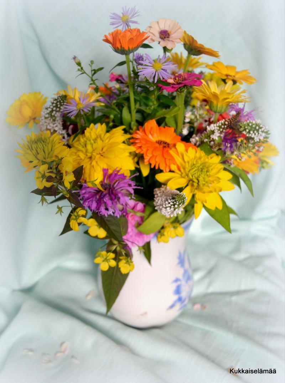 Juhlia ja kukkia