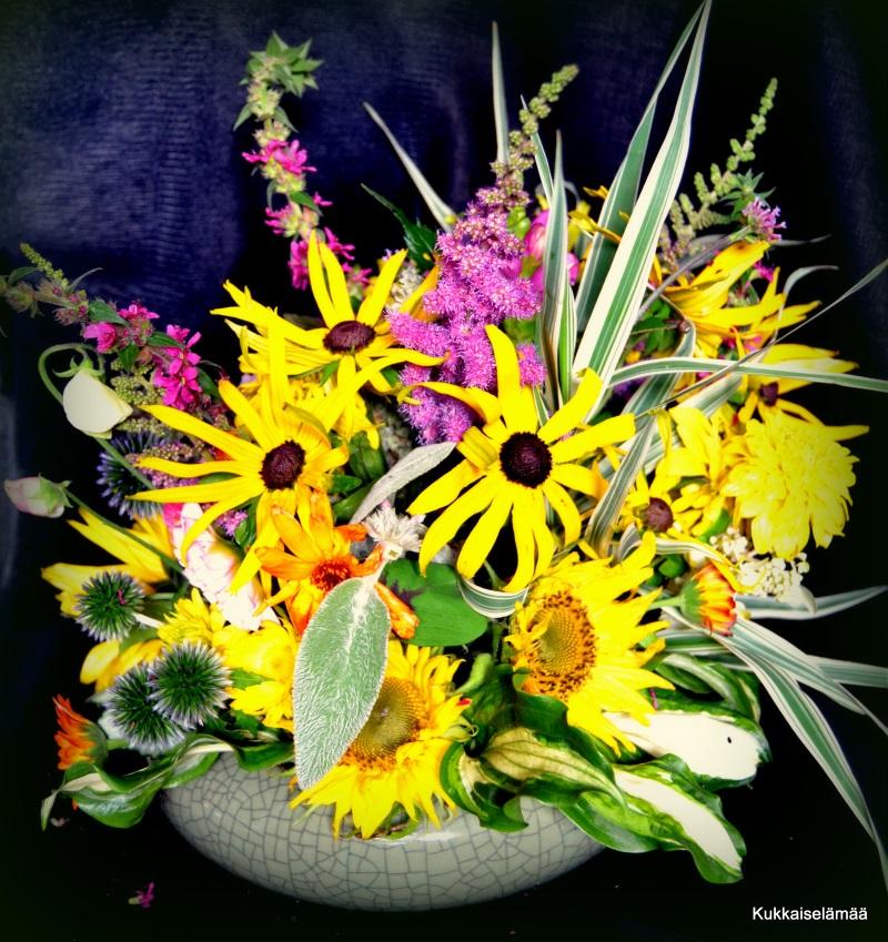 Aina vain kukkia! – Flowers..
