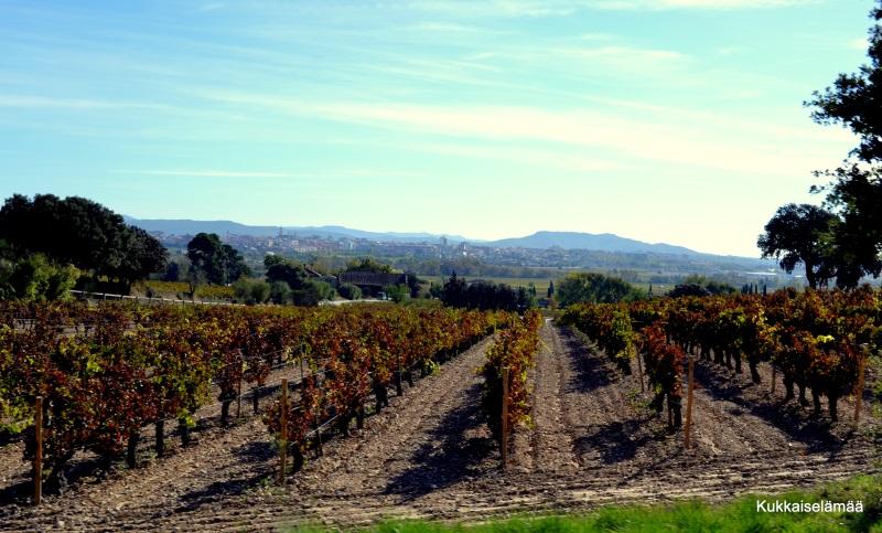 Viinitilalta vuorten kautta Sitgesiin
