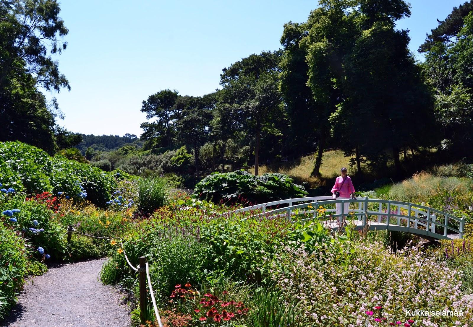 Trebah – ihan mieletön puutarha!