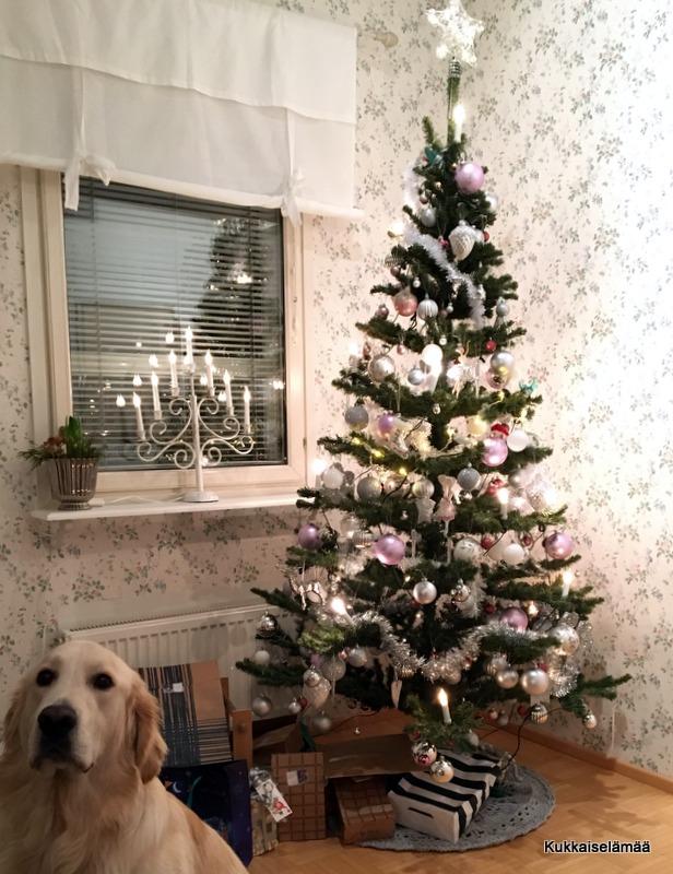 Merry Christmas! – Hyvää Joulua!