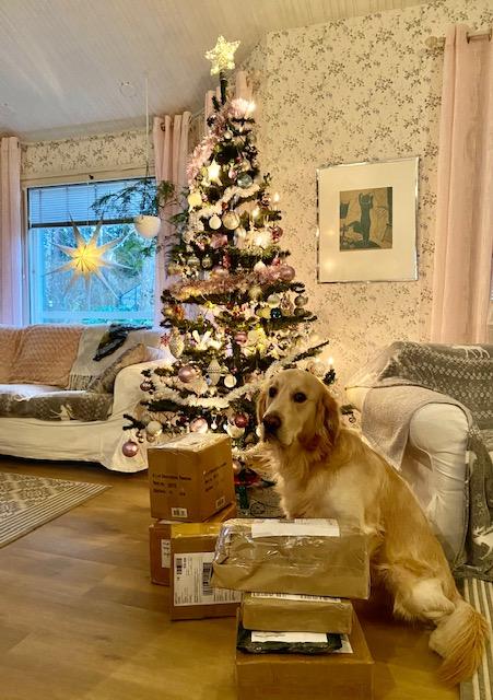 Joulun odotusta
